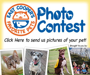 East Cooper's Favorite Pets... enter your pet today!